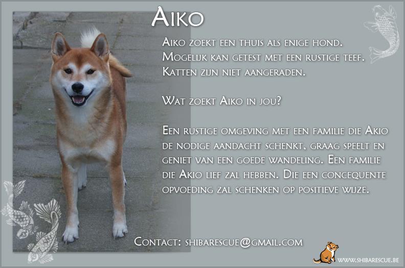 Aiko, Reu, 2005