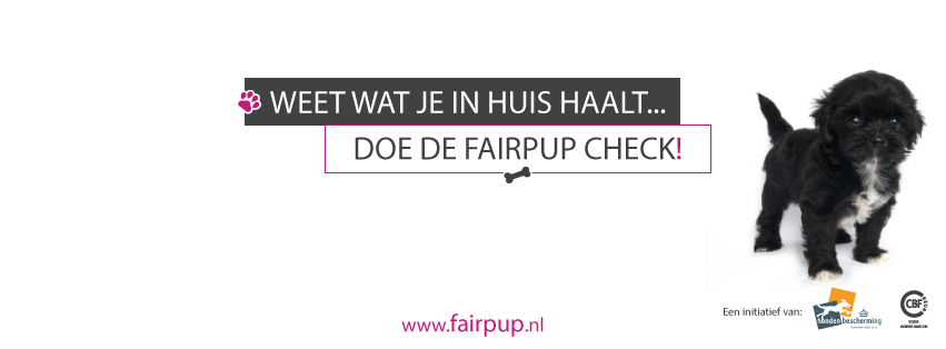 Doe de Fair Pup check